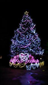 スペースワールドクリスマスツリー