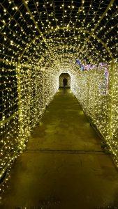 スペースワールド光のトンネル