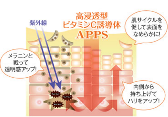 高浸透型ビタミンC誘導体効果シミ