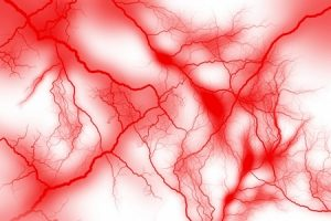 シナモンシミ効果毛細血管