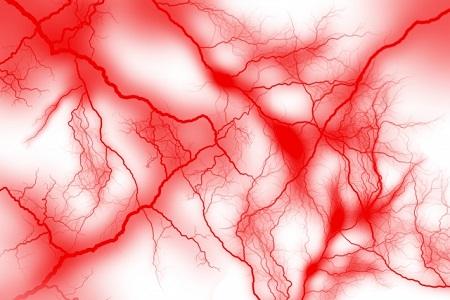 シナモンしみ効果毛細血管