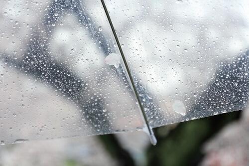 なばなの里イルミネーション 雨の日 穴場