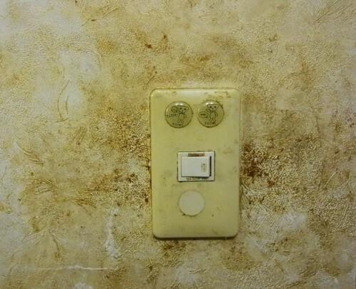 キッチン 油汚れ 落とし方 壁