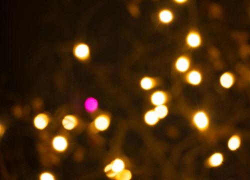 仙台光のページェント 電球 ピンク