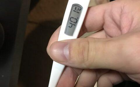 インフルエンザ 高熱 飲み物
