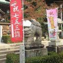 七五三 神社