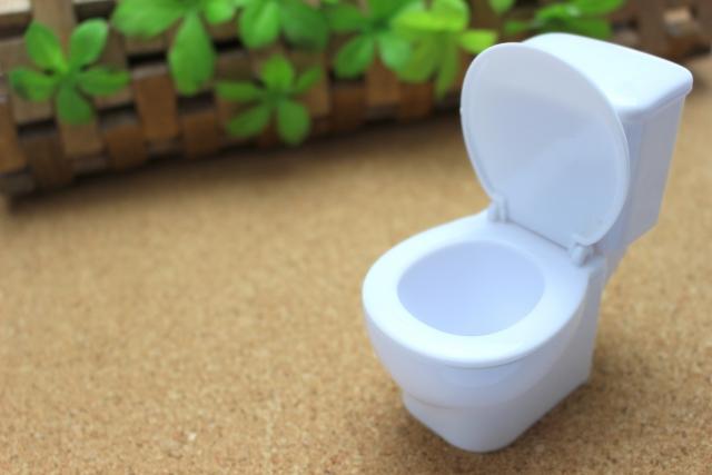 トイレ つまり 自然に治る