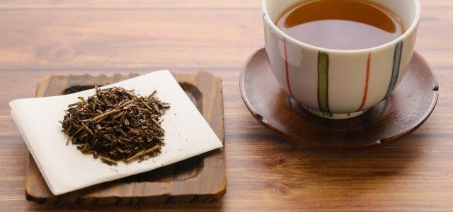 マツコの知らない世界 ほうじ茶ジェラート