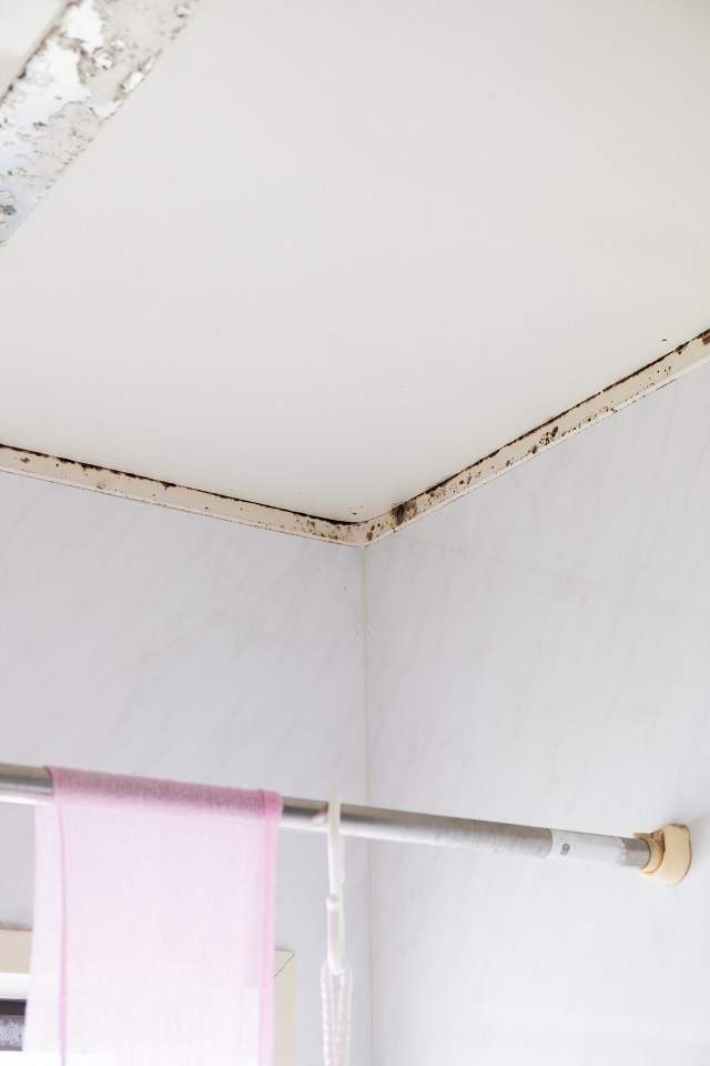 風呂 天井 掃除